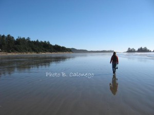 I can walk on water on this beach near Tofino!